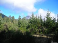 16 National Forest Rd  52 Packwood WA, 98361