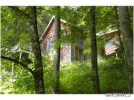 1171 Cooktown Road Bakersville NC, 28705