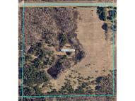 Tbd County Road 1 Pine River MN, 56474
