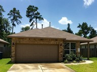 10036 Sterling Place Dr Conroe TX, 77303