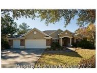 10344 Ridge Top Loop Weeki Wachee FL, 34613