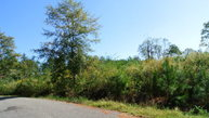 00 Forest Hills Ln Andalusia AL, 36420
