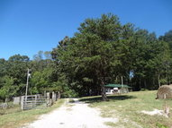Lone Oak Drive - Lot 1 Rickman TN, 38580