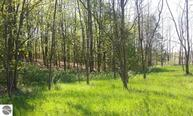 4 Acres Glovers Lake Road Bear Lake MI, 49614