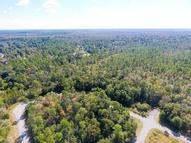 Lot 13, Sun Bear Circle Freeport FL, 32439
