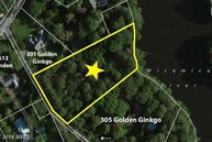 303 Golden Ginkgo Lane Fruitland MD, 21826