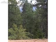 942 Coyote Trail Woodland Park CO, 80863
