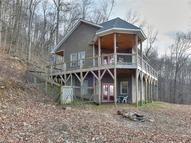 20 Donica View Swannanoa NC, 28778