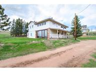 123 County 25 Road Divide CO, 80814