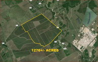 0 County Road 203 (1276+/- Acres) Alvin TX, 77511