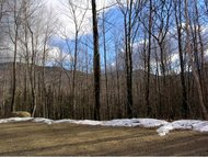 27d Partridge Rd Jackson NH, 03846