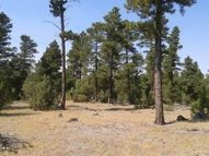 Lot 3 Conifer Dr Moorcroft WY, 82721