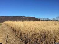 Lot 9  Grahams Woods Rd Newville PA, 17241