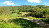 45 Acres Little Sycamore Rd Tazewell TN, 37879