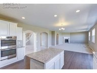 2166 Longfin Dr Windsor CO, 80550