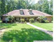 30 Whippoorwill Road Coldwater MS, 38618