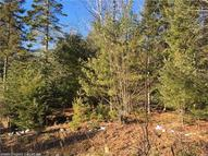 Lot 4 & 6 Chandler Dr Enfield ME, 04493