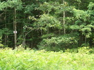 Lot 11 Pine Grove Estates Lerona WV, 25971