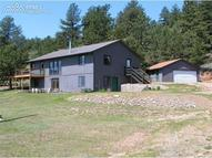 38919 County 77 Road Lake George CO, 80827