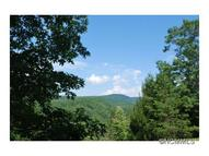 Lot 1 Mine Mountain Preserve 1 Pisgah Forest NC, 28768