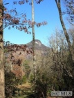 21 Sagee Woods Drive Highlands NC, 28741
