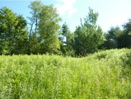 Lot 4 Birch Lane Monkton VT, 05469