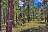 1729 S Pine Ridge Drive Williams AZ, 86046