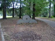 Lot 10 Millstone S/D Fort Gaines GA, 39851