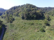 175.64ac South Fork Road Whitleyville TN, 38588