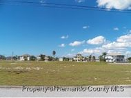 4033 Bluefish Dr Hernando Beach FL, 34607