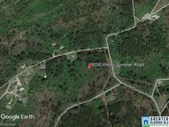 9030 Weller Sumpter Rd 8.1acres Brookwood AL, 35444