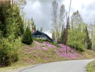 269 Ridgeview Dr Twin Mountain NH, 03595