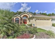 11600 New Haven Drive Spring Hill FL, 34609