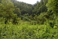 59.63 Acres Black Sheep Hollow Rd Sneedville TN, 37869