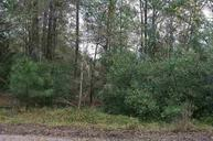 Lot 12 Wellington Lane Ridgeland SC, 29936