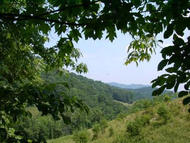 #46 Wildwood Ridge The Retreat Caldwell WV, 24925