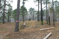 Lot 12 Oakley Dr Water Valley MS, 38965