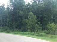 00 Lot #9 Old Creek Road Picayune MS, 39466