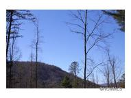 Lot 63 Peppervine Circle 63 Rosman NC, 28772