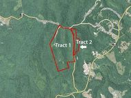 0-Tract 2 Vanover Ridge Rd Whitley City KY, 42653