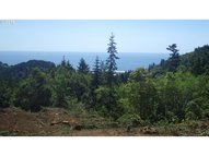 Grizzly Mountain Rd 3b Gold Beach OR, 97444