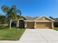2708 Wood Pointe Drive Holiday FL, 34691