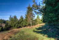 200 N Bayview Waldport OR, 97394