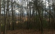 Lot 3 Enchanted Woods Lot 3 Blairsville GA, 30512