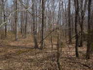 6.50 Ac. Hatcher Rd. Moss TN, 38575