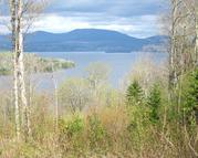 Lot 6 Rangeley West Rangeley ME, 04970
