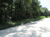 Lot-37 355th Ave Old Town FL, 32680