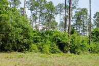 33 Oaky Knoll Road Fort Gaines GA, 39851