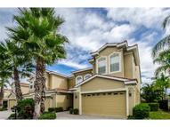 1411 Tessano Place 1411 Palm Harbor FL, 34683