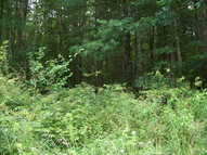 Lot 7 Pine Grove Estates Lerona WV, 25971